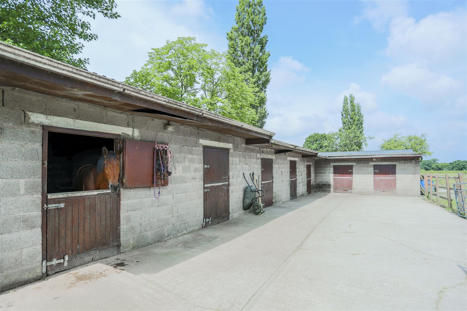 5 Bedroom Farmhouse For Sale - 2.JPG